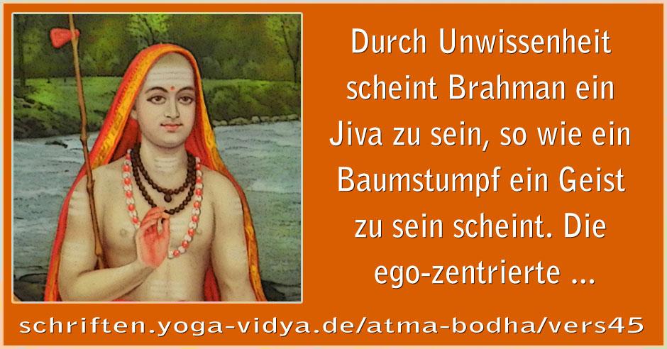 Atma Bodha – Vers 45